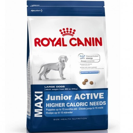 Royal Canin Maxi Junior Active 4kg