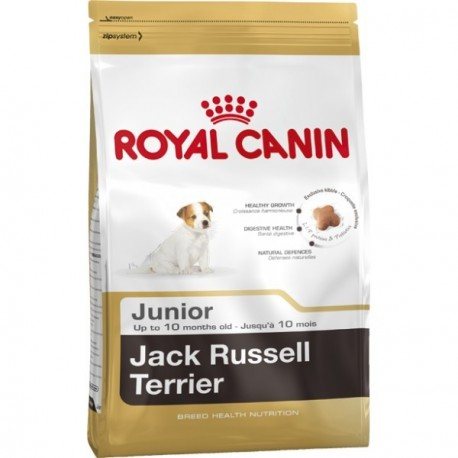 Royal Canin Jack Russel Junior 0,5kg