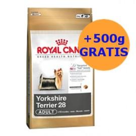 Royal Canin Yorkshire 0,5kg + 0,5kg GRATIS !!!