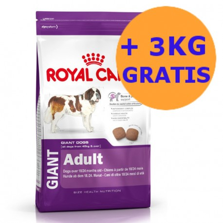 Royal Canin Giant Adult 15 + 3KG GRATIS !!!