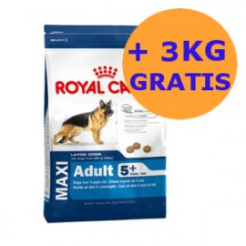 Royal Canin Maxi Adult 5+ 18KG GRATIS !!!