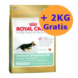 Royal Canin German Shepherd Junior 12 + 2KG GRATIS !!!