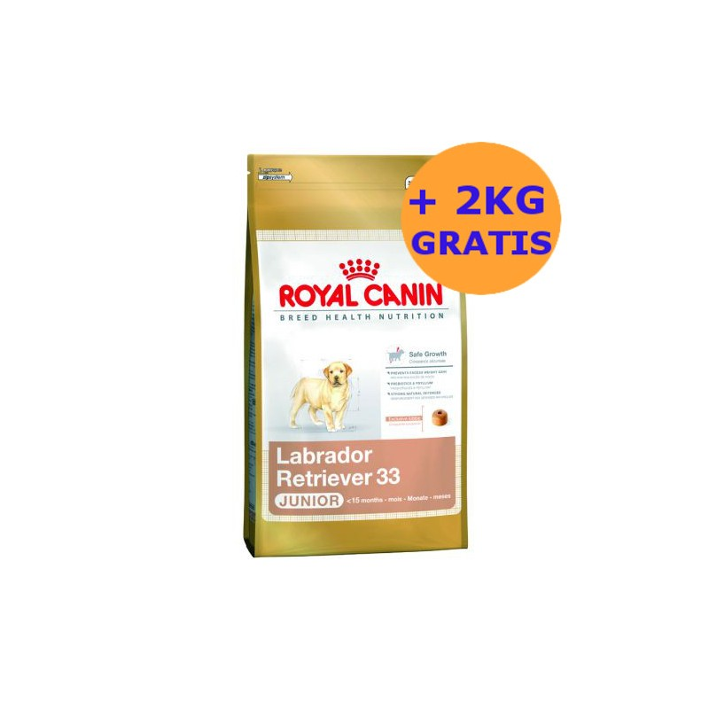 royal canin labrador junior 12 2kg gratis. Black Bedroom Furniture Sets. Home Design Ideas