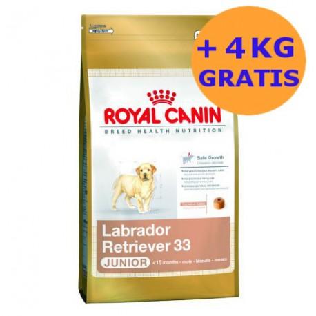 Royal Canin Labrador Junior 2 x 12kg + 4KG GRATIS