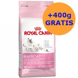 Royal Canin BabyCat 400g + 400g GRATIS