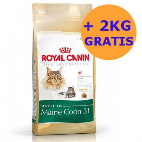 Royal Canin Maine Coon 10kg + 2KG GRATIS