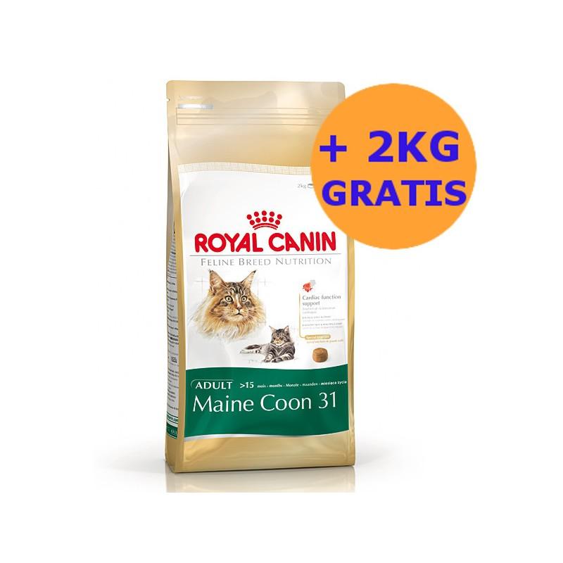 royal canin maine coon 10kg 2kg gratis. Black Bedroom Furniture Sets. Home Design Ideas