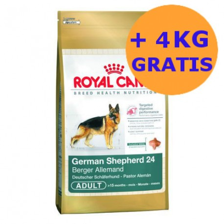 Royal Canin German Shepherd 2 x 12 + 4KG GRATIS !!!