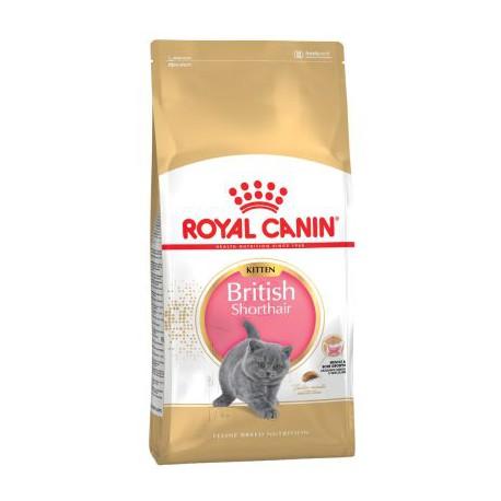 Royal Canin Kitten British Shorthair 0,4kg