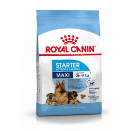 Royal Canin Maxi Starter Mother & BabyDog 2 x 15kg