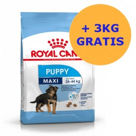 Royal Canin Maxi Puppy 15 + 3KG GRATIS